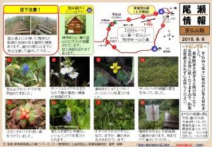 至仏山自然情報20150906(菅原)