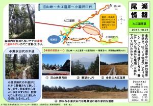 20151021 大江湿原(穂坂)