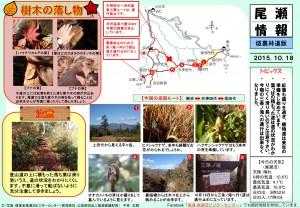 20151018裏燧林道(平林)