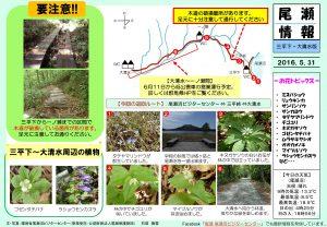 20160520大清水(石塚)
