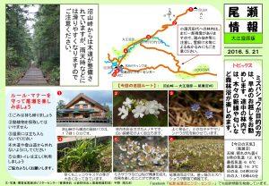20160521 大江湿原(宇野)