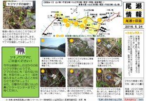 尾瀬ヶ原自然情報20160524 (萩原)