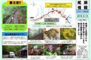 2016年6月15日-三平下・大清水の様子