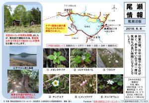 20160606尾瀬沼(穂坂)