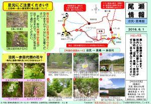 20160601沼尻・見晴(川上)