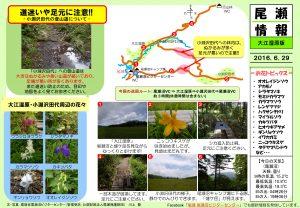 20160629 大江湿原(川上)