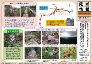 20160607帝釈山・田代山(清水)