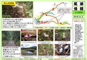 20160602 大江湿原(石塚)