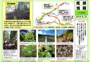 2016010 大江湿原(江崎)