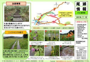 20160715 大江湿原(石塚)