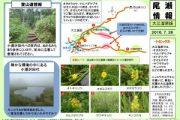 2016年7月26日-大江湿原の様子