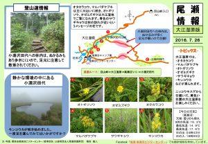 20160726大江湿原(hosaka)