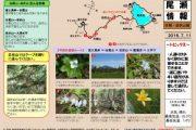 2016年7月11日-白尾山・皿伏山の様子