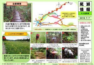 20160707 大江湿原(清水)