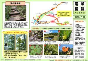 20160719大江湿原(江崎)