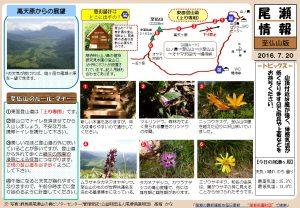 至仏山自然情報20160720(髙堀)