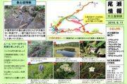 2016年8月11日‐大江湿原の様子