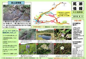 20160811 大江湿原(清水)