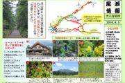 2016年8月5日‐大江湿原の様子