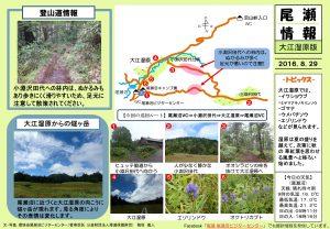 20160829大江湿原(穂坂)