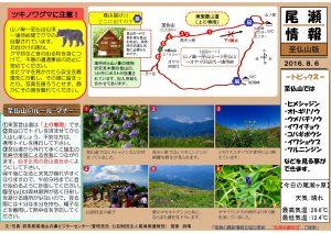 尾瀬情報至仏山20160806(菅原)