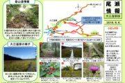 2016年9月6日‐大江湿原の様子