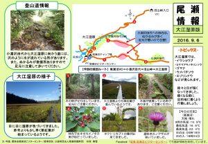 20160906大江湿原(石塚)