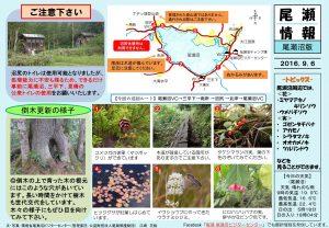 20160906尾瀬沼(江崎)