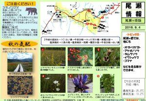 尾瀬ヶ原自然情報20160904(石塚)