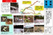 2017年6月3日-大江湿原の様子