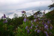 2017年8月30日-山の鼻ビジターセンターより(秋に向かう至仏山)
