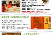 尾瀬沼ビジターセンターからのイベント情報『葉っぱWEEK』