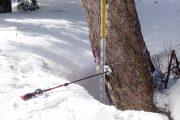 平成30年シーズンの至仏山残雪調査を行いました