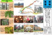 2018年10月11日-大江湿原の様子