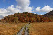 2018年10月8日-山の鼻ビジターセンターより(尾瀬ヶ原から見る木々の紅葉)