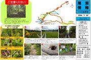2019年7月20日-大江湿原の様子