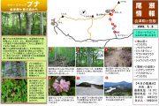 2019年7月6日-会津駒ヶ岳の様子