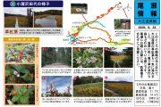 2019年9月23日-大江湿原の様子